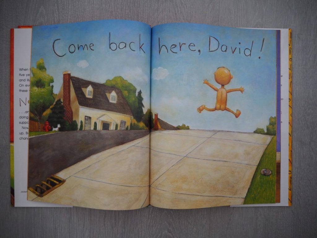 No David Inside